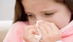 logo-grypa